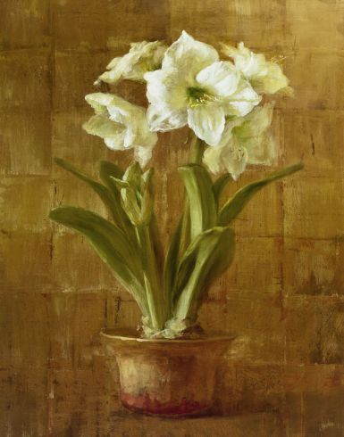 white-amaryllis-on-bronze