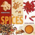 Ute Nuhn - Spice Collage
